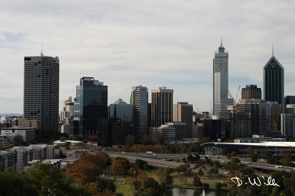 Perth's skyline seen from the botanic garden, Perth, WA, Australia