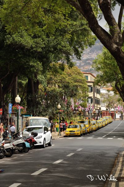 Taxi queue in Funchal, Madeira, Portugal