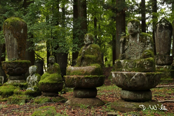 Buddha statues at a temple, Nikkō, Japan