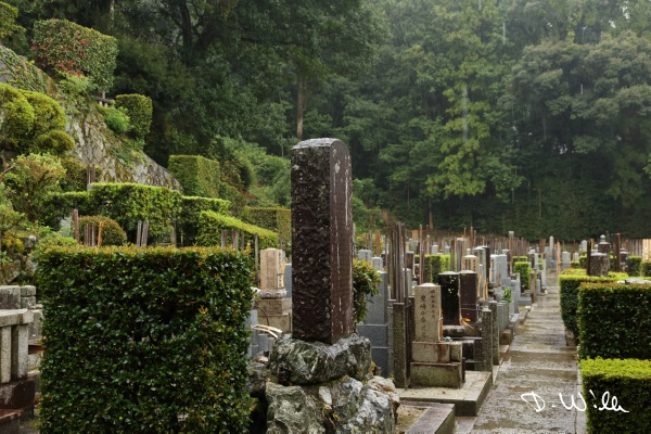 Cemetery at the buddhist temple 群仙山 一心院, Kyōto, Japan