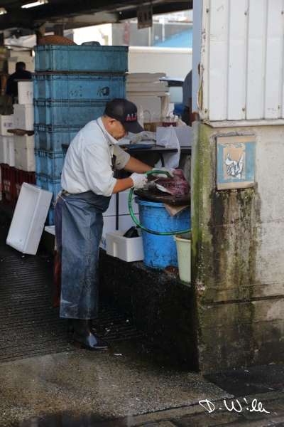 Worker cleaning fish at the Tsukiji fish market, Tokyo, Japan
