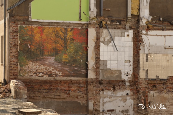 Wallpaper on a sidewall of a house neighboring a demolished house, Braunschweig, Germany