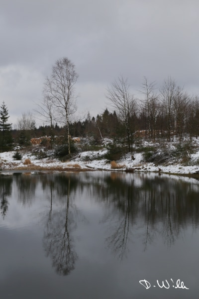 Winter scenery at a lake, Harz, Germany